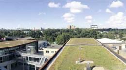 Jaffee12-Panorama