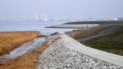 Streitobjekt Offshore-Terminal Bremerhaven